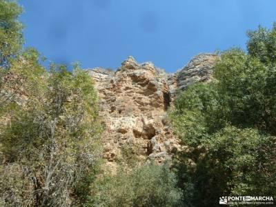 Río San Juan_Duratón; bosque encantado urbasa valles del pirineo cerezas del jerte excursion